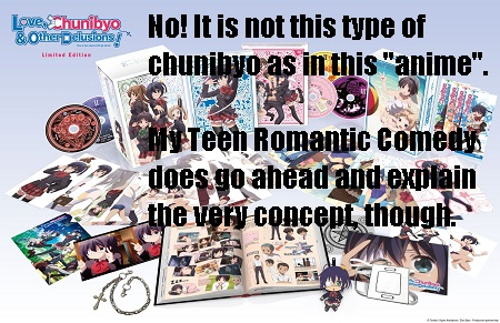 Love Chunibyo & Other Delusions anime series Collecto's Edition by Sentai Filmworks-Created meme 'not this chunibyo'